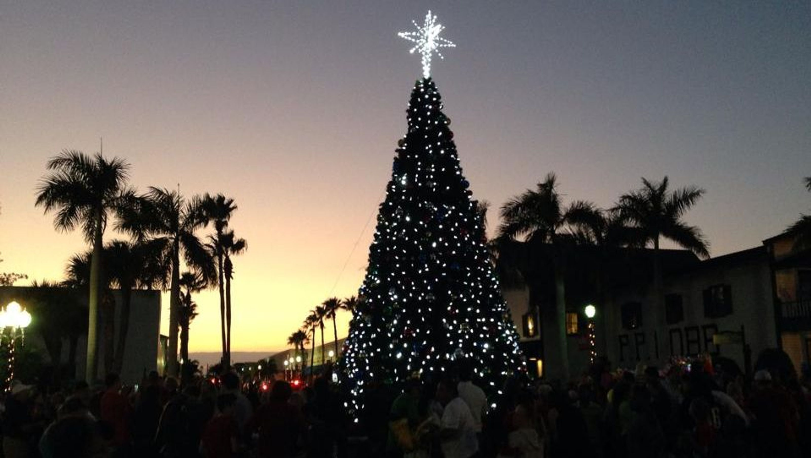 The lighting of the downtown Fort Pierce, Florida Christmas Tree.