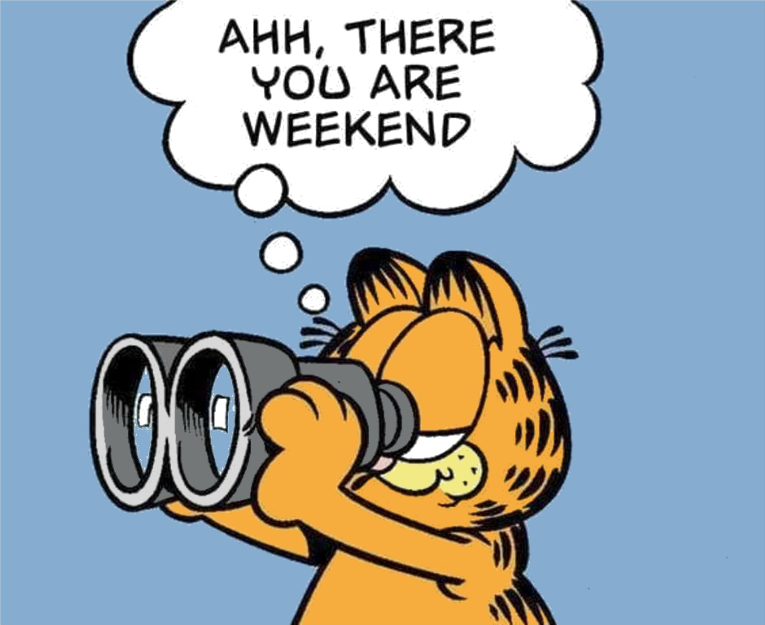 Ahh, there you are weekend - Weekend Happenings with Garfield the cat looking through binoculars.