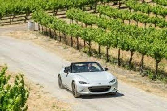 Man in a convertible sports car taking a drive through a vineyard.