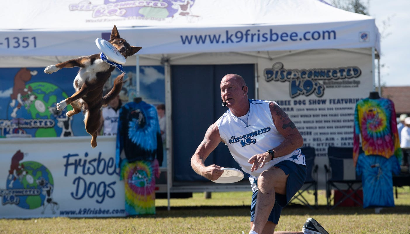 A man demonstrating frisbee throwing and a dog jumping in the air catching it.