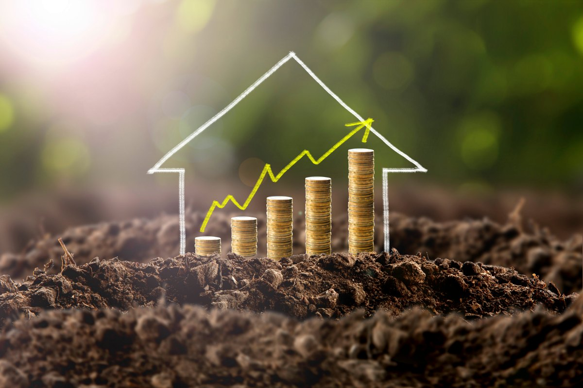 Picture of dirt with a hand chalk drawn house and stack of gold coins in the house with an up graph arrow to show increase in value.